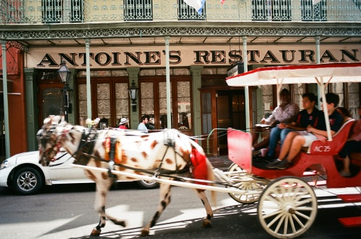 Carriage in front of Antoine's